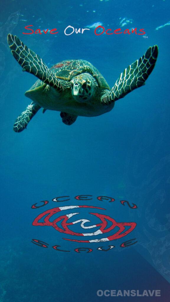 Free-Wallpapers-Ocean-Slave-Dive-sea-turtle-save-our-ocean
